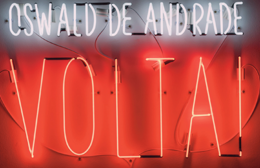 "Image from the group show Nuestra América, at Galeria Luisa Strina, on which I wrote one of the essays for Artforum - the neon image reads, ""Oswaldo de Andrade, Volta!"" / ""Oswaldo de Andrade, Come Back!"""